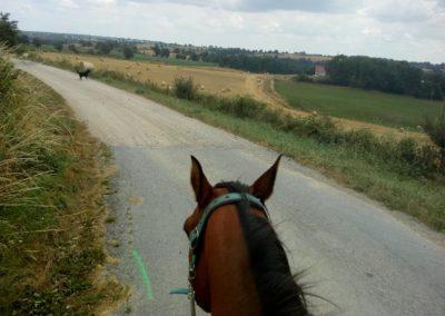Paardrijden met Elza