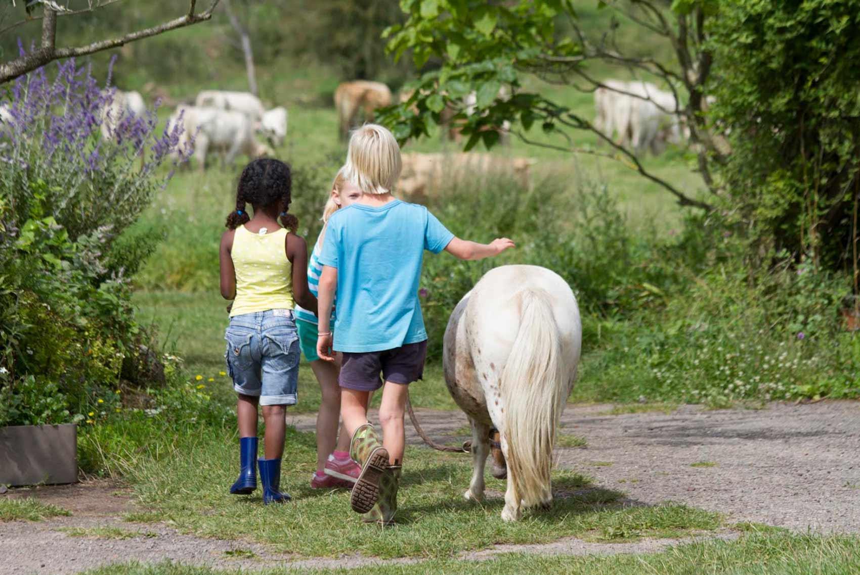 Kinderparadijs, wandelen met Lute, Brénazet, Allier, Auvergne