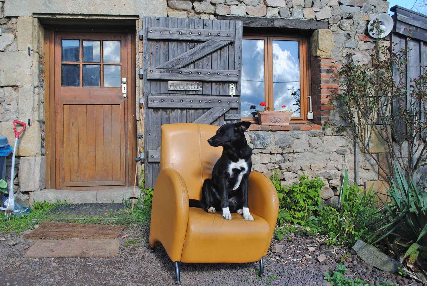 Kinderparadijs, Elza, liefste hond van de wereld!