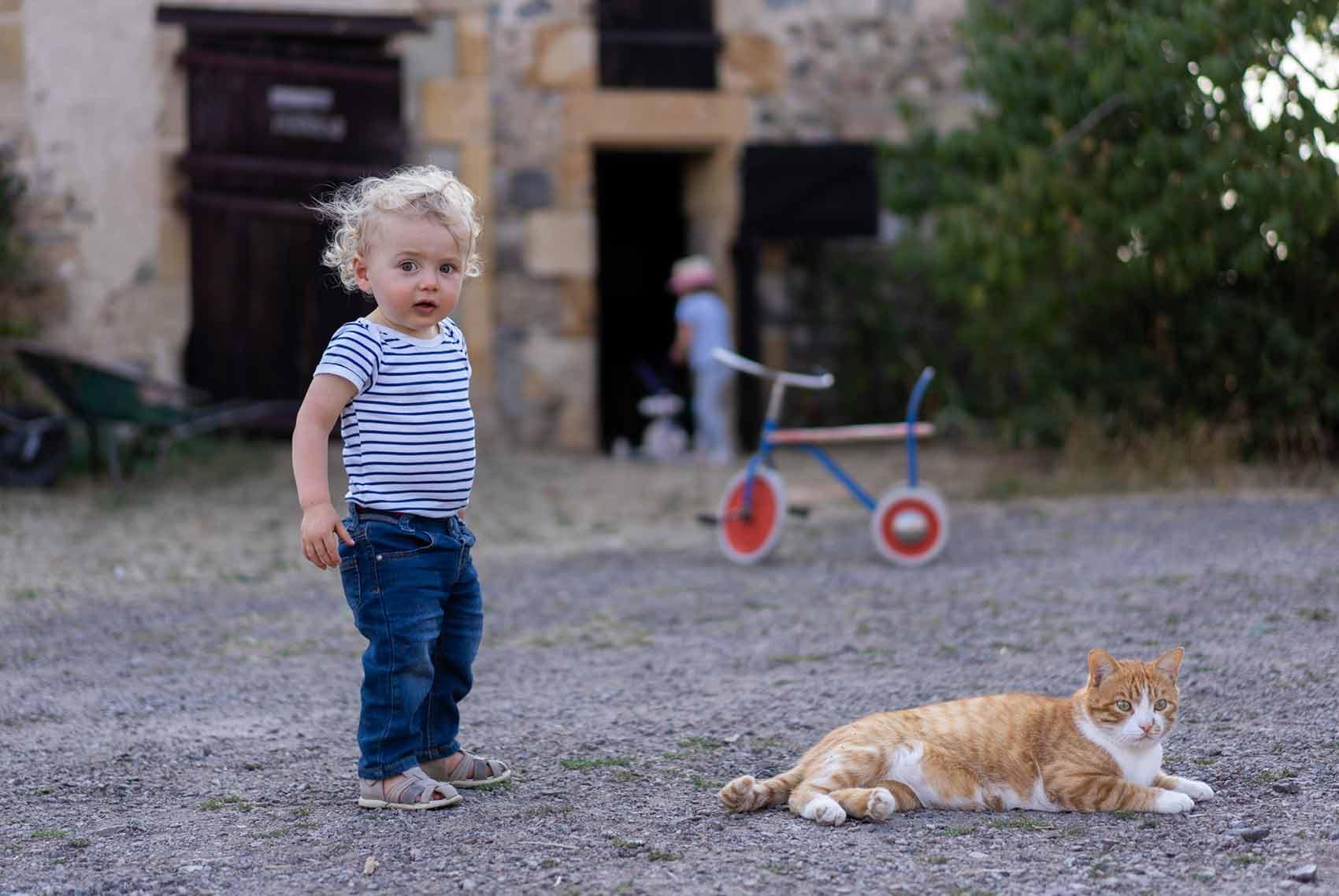 Kinderparadijs, peuter en kat